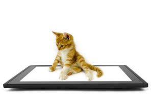 The 5 Most Common Reasons for iPad Touch Screen Repair Service; Number 5 Will Shock You!